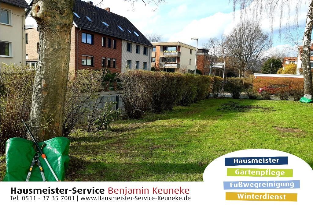Heckenschnitt, Hecke schneiden, in Hannover