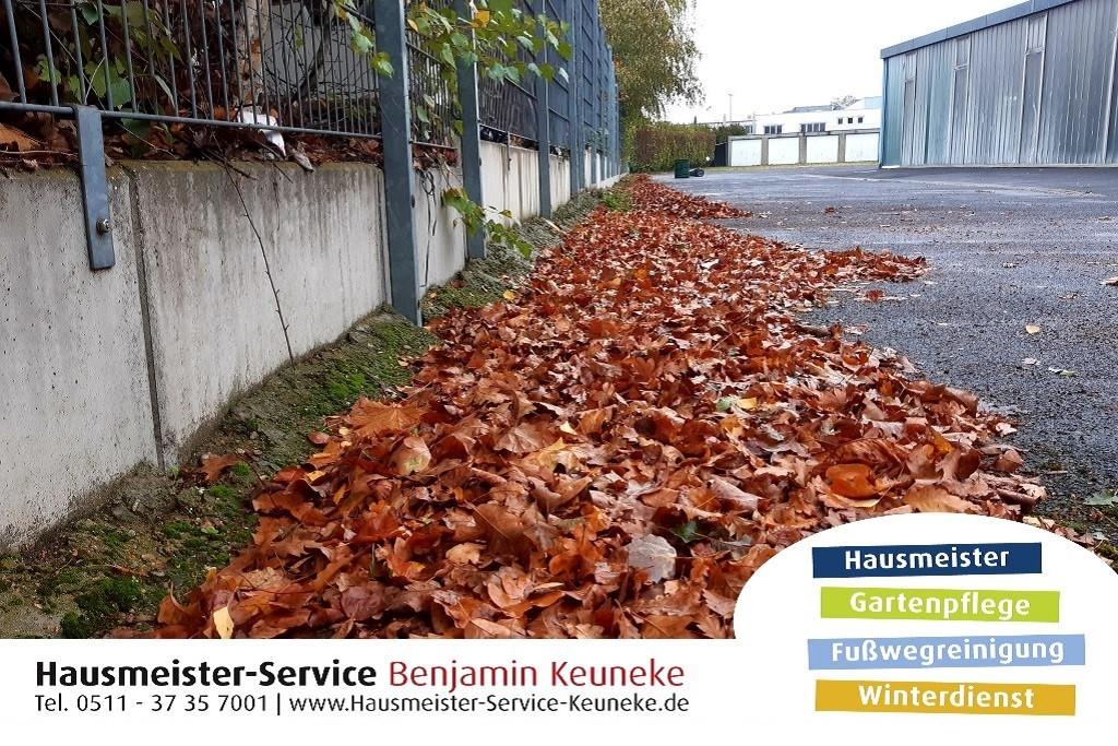 Laub, Laubfegen, Herbstlaub, Laubbeseitigung, in Hannover